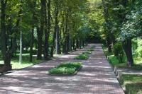 Парк «Берёзовая Роща» в Киеве
