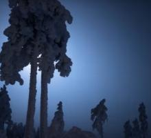 Финская зима - таймлапс