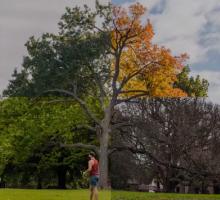 Фотограф показал 4 сезона Мельбурна в одном видео